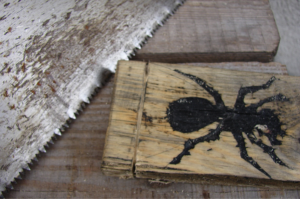 The Ant Project - Image 13
