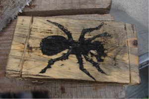 The Ant Project - Image 14