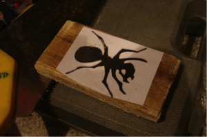 The Ant Project - Image 2