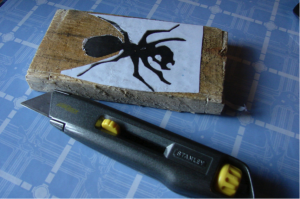 The Ant Project - Image 3