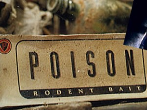 Poison Video Clip Remix by Stone Oakvalley Studios