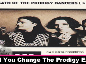 How Would You Change The Prodigy Experience