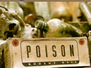 Poison (Jilted) VS Poison (Edit) VS Poison (Radio 1) VS Poison (Science Dub)