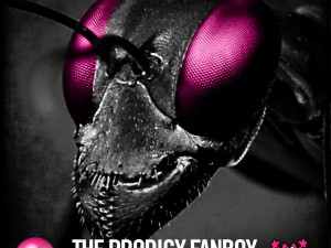 The Prodigy Fanboy Podcasts by GL0WKiD session #002