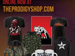Sweet New Items on The Prodigy Online Store