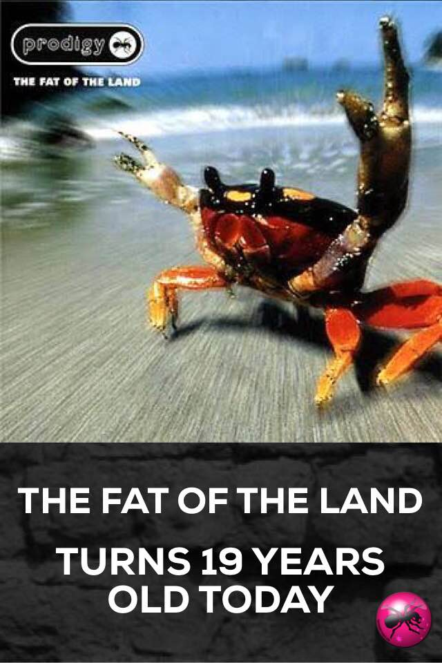 The Fat Of The Land Turns 19 Years Old Today!