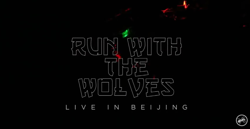 Incredible video of Run With The Wolves (Live In China)