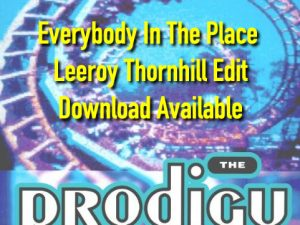 Everybody In The Place - Leeroy Thornhill Edit - Download